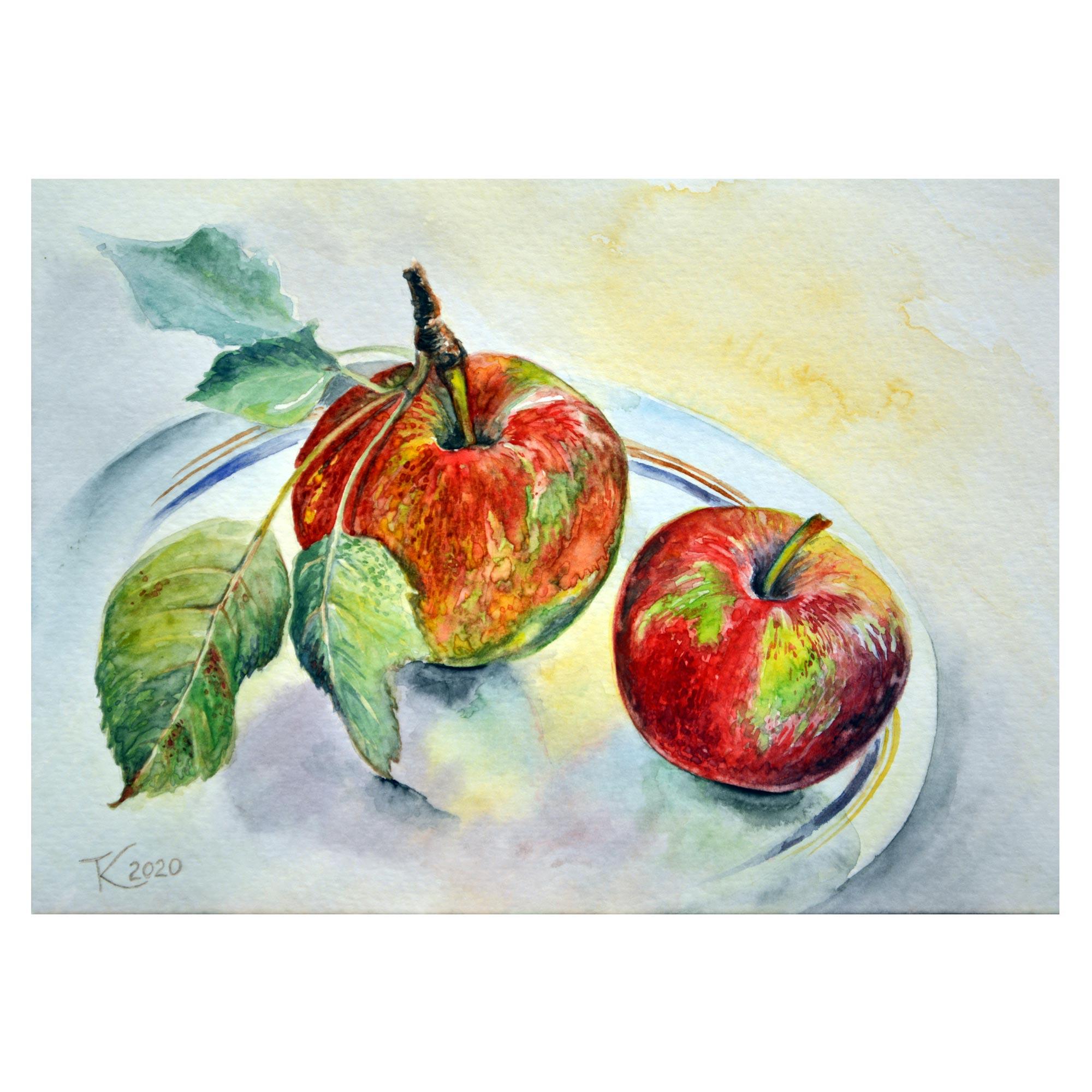 Літні яблука. 2020. Тетяна Кучмій