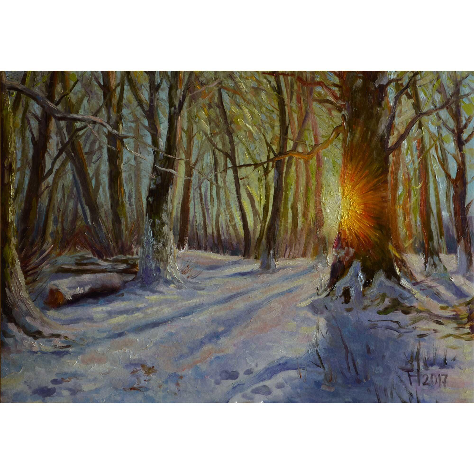 Зимове сонце. 2017. Тетяна Кучмій
